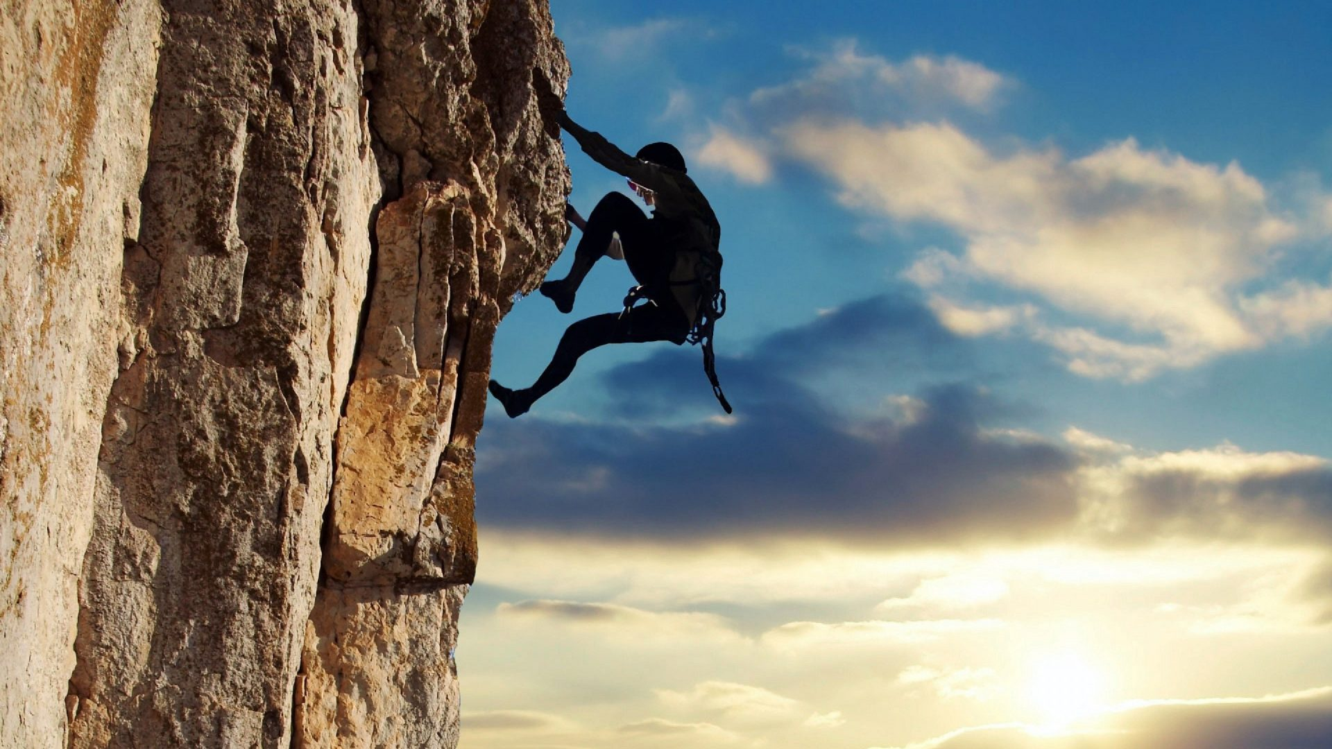 Elu5-3-peamist instinkti, milline domineerib sinu üle ja kuidas see sinu käitumist mõjutab