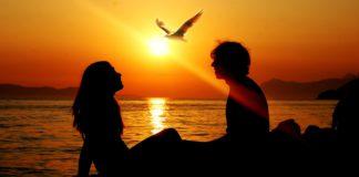 Elu5-kes on sugulashinged ja kuidas ära tunda kas oled enda oma juba leidnud