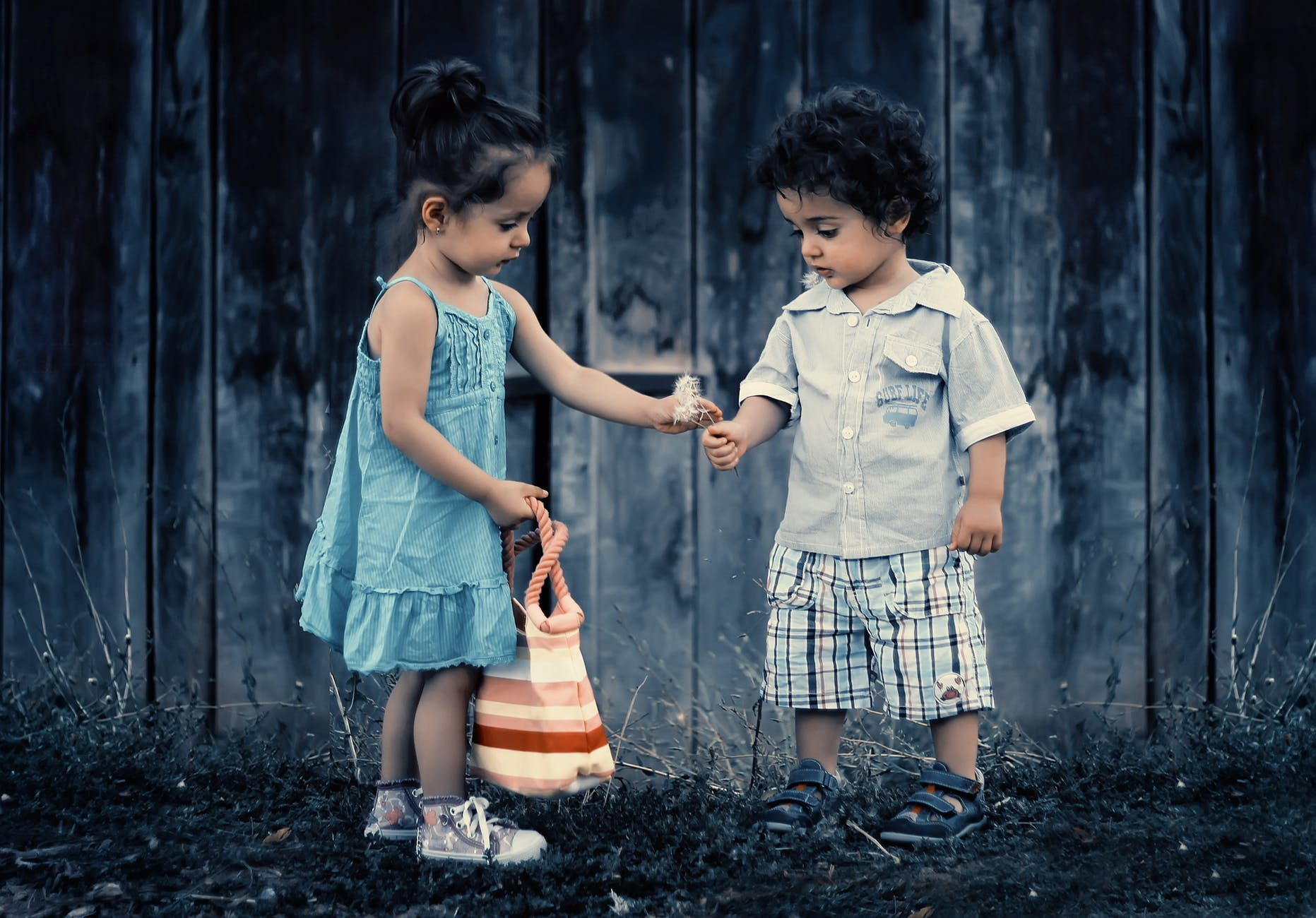 poiss ja tüdruk