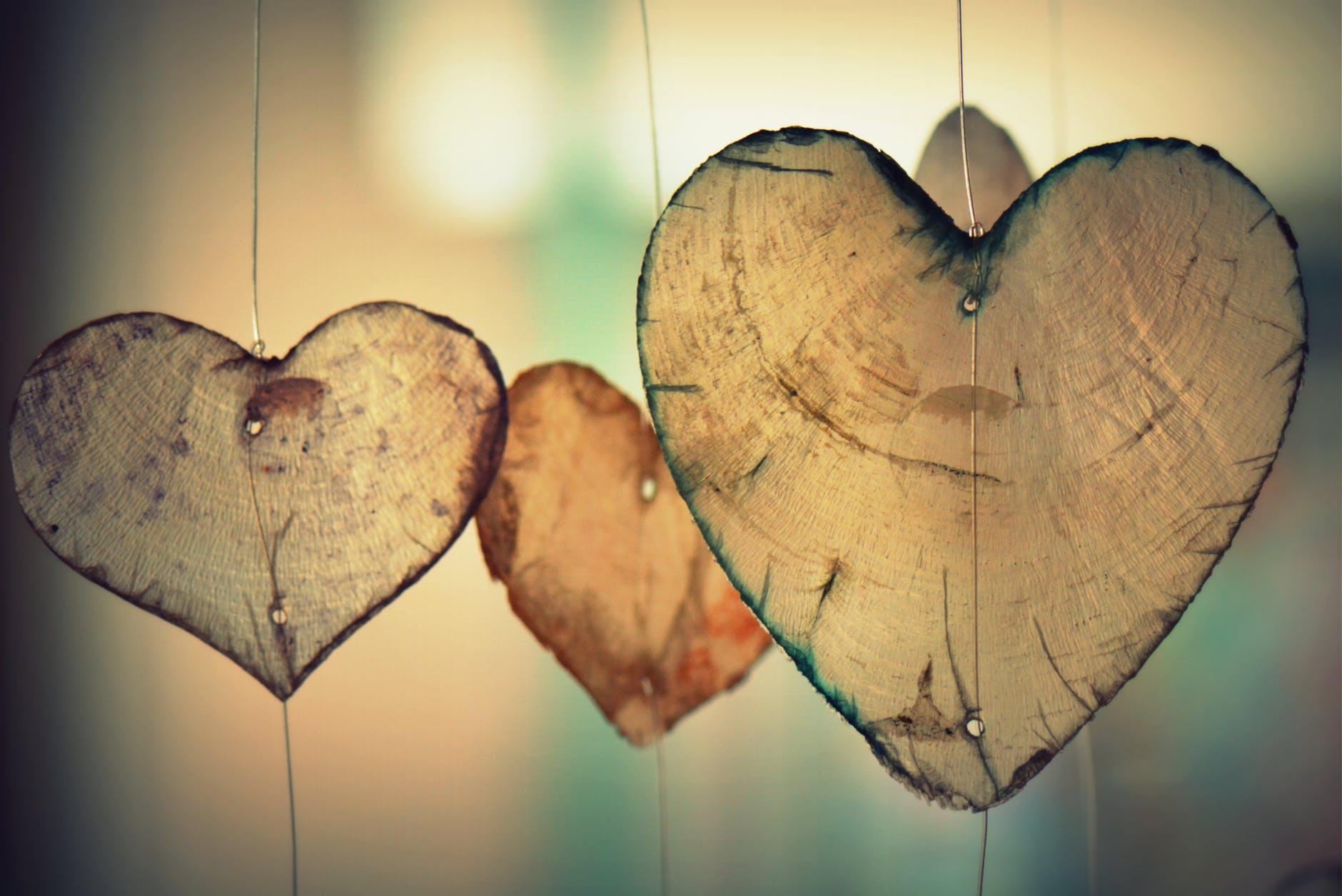oksüdeerunud kolesterool on halb südamele