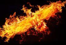 tõuse tuhast nagu fööniks